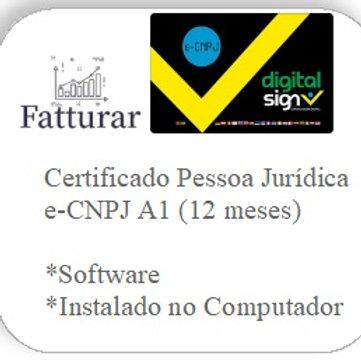 e-CNPJ A1 (12 meses)