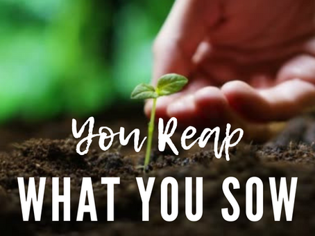 You Reap What You Sow: A Lesson From My 6yr Old