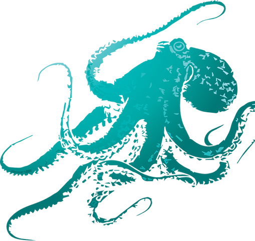 Octopus Graphic.png