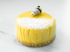 N.Y Cheesecake