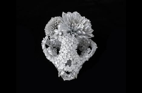 flower funeral -cat-