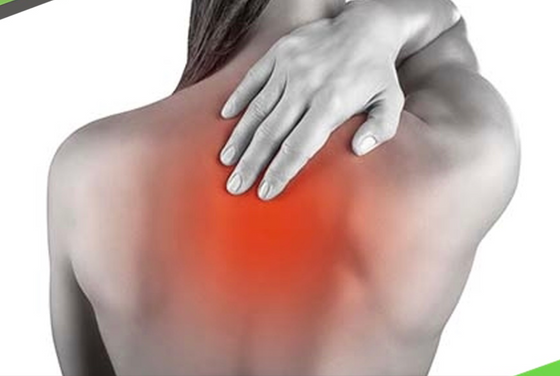 別再讓背痛影響你的生活 全面瞭解四種背痛三大解決方法