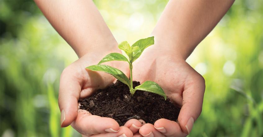 sustainability_ss1.jpg