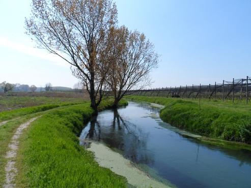 Ciclopista delle risorgive: dal Mincio all'Adige in bicicletta