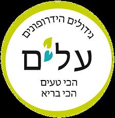 לוגו עלים.png