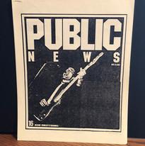 "The Skunks ""Public News"" 1982"