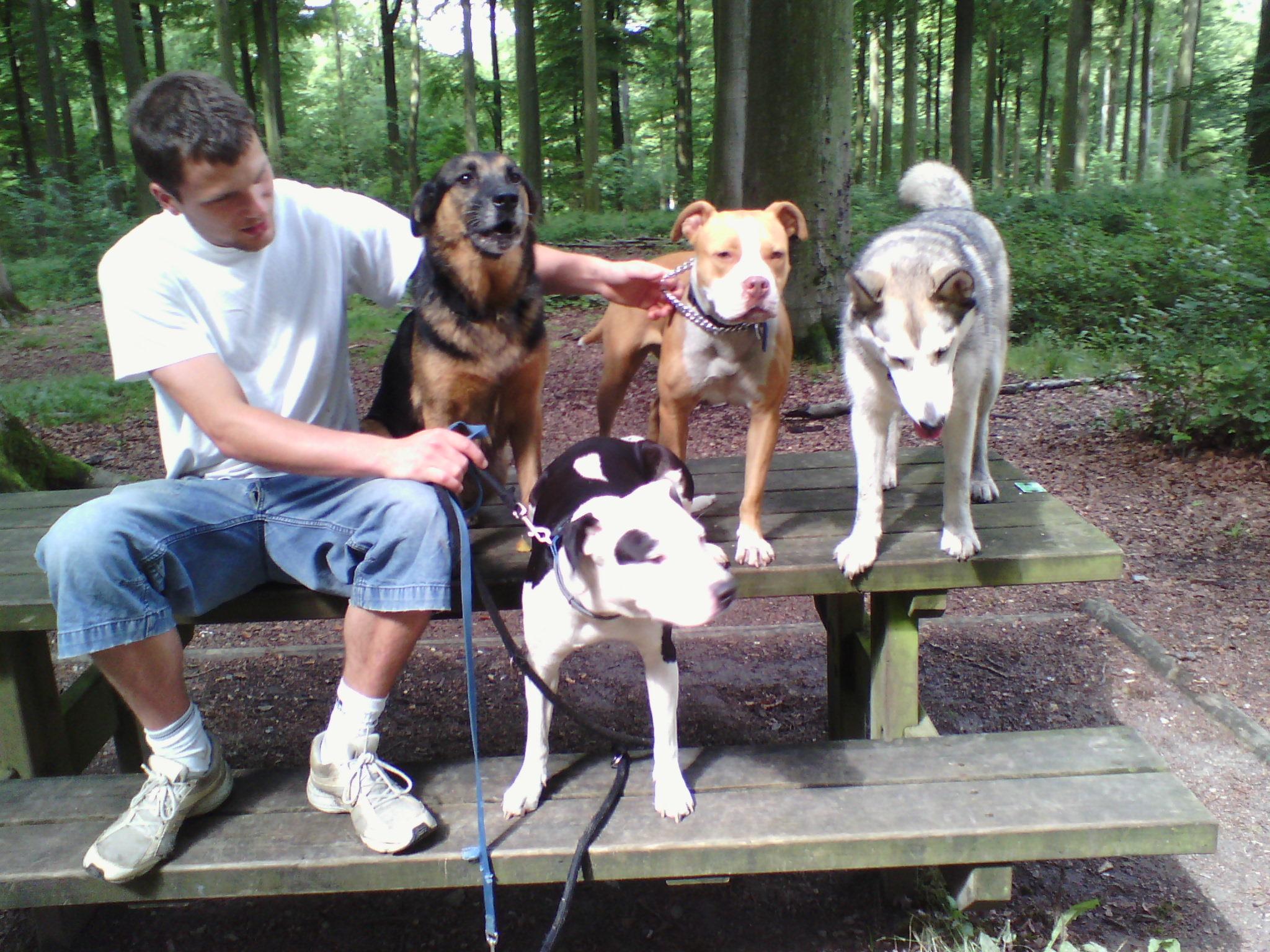 Lilou, Vinga, Akyla & Laika