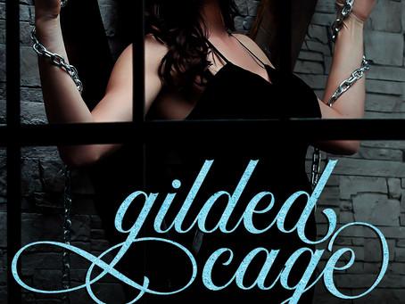 A new dark romance enemies to lovers mafia box set!