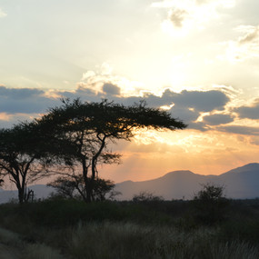 Amazing Opportunities and an Unforgettable Experience: Global Encounters Kenya