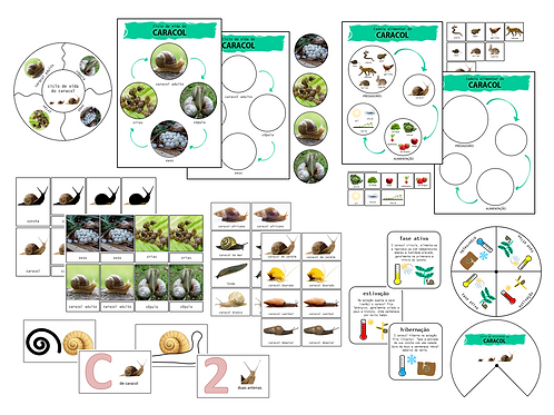 Bundle de 8 atividades A Vida do Caracol - inspiração Montessori