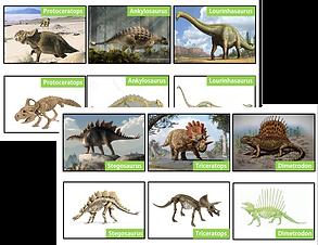 Atividade dinossauros.png