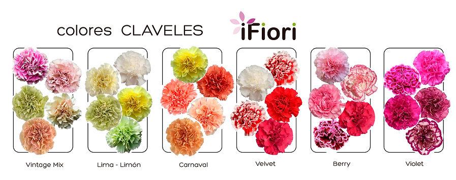 Colores CLAVELES.jpg