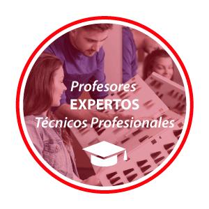 Profesores Expertos