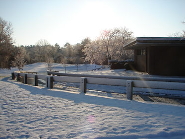MorningSnow2009.jpg