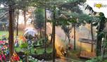 Cafe dengan Nuansa Alam di Gunung Geulis