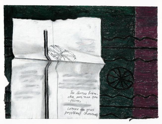 Marie Jacotey, Papillon charnu, 2020