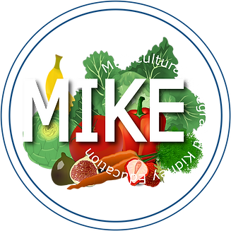 MIKEevent-logo-white-transparent.png