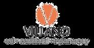 Villano Logo 2020.png