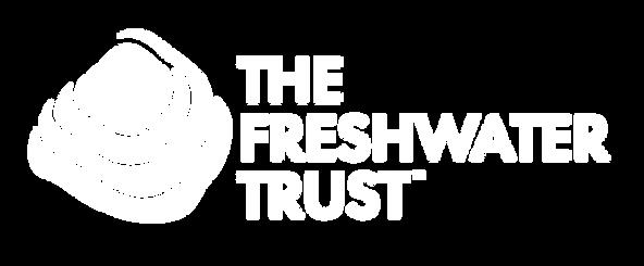 TFT_logo_1_WHITE.png