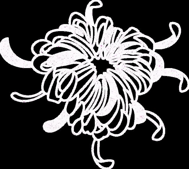 Flower%252520Outline%252520_edited_edite