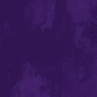 AhimsaHouse_Texure_purple.png