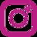 pink ig logo.png