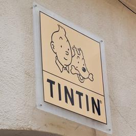 Tintin, Lucky-Luke, Astérix au bûcher. 5000 livres détruits au Canada pour offense aux autochtones