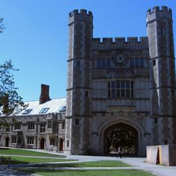 Princeton : contre le « racisme systémique », cours de latin et grec remplacés par race et identité