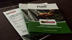 palmportugal.pt