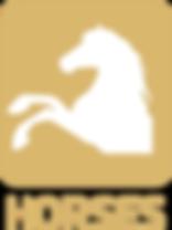 misturas de sementes horses nova relva