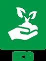 misturas de sementes eco nova relva