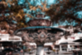 Hyde Park Village Tampa