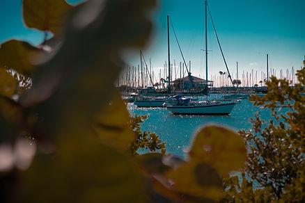 Davis Islands Yacht Club Tampa