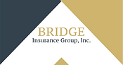 Bridge Insurance Group