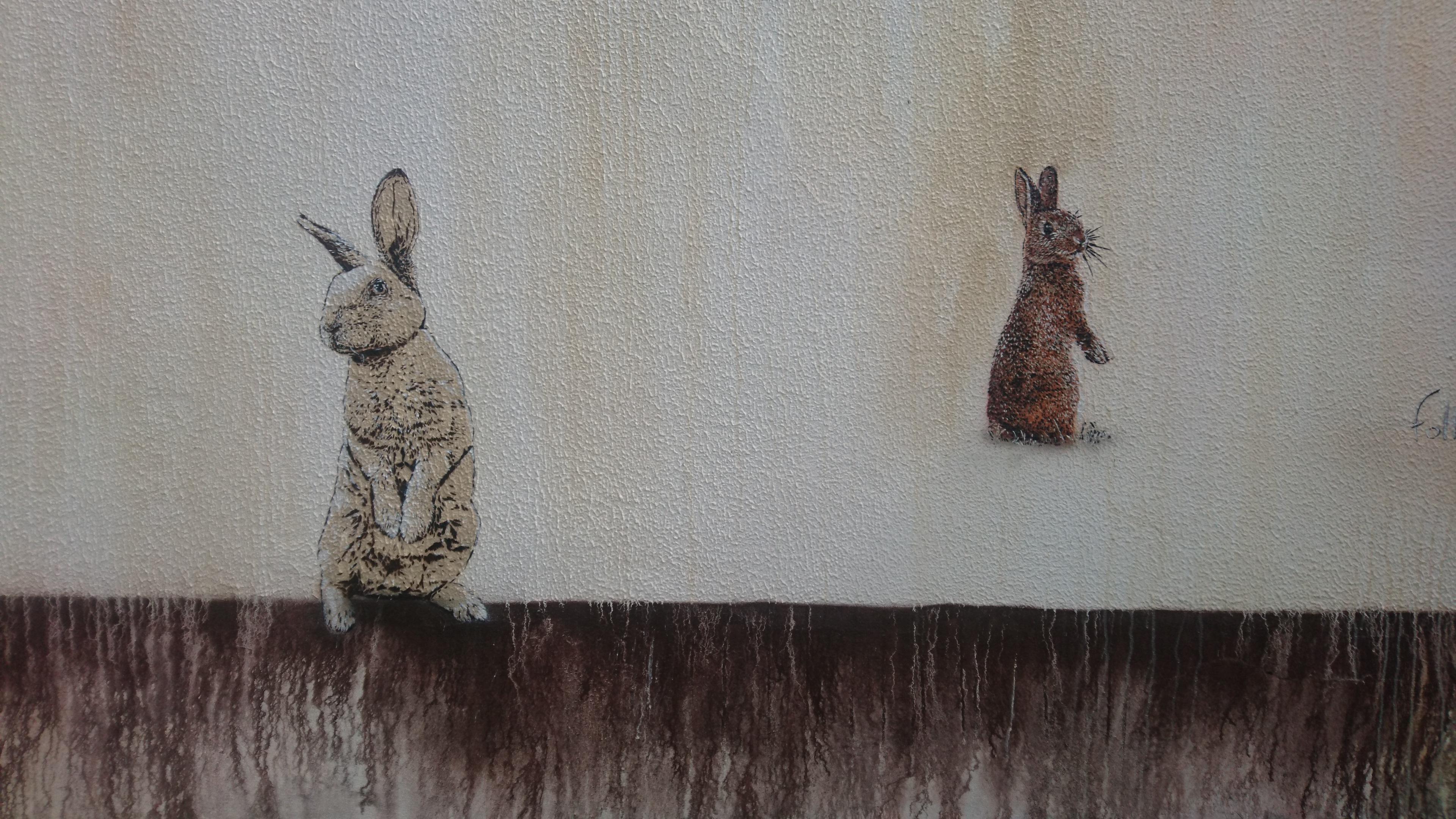 AZUREVA brown rabbits