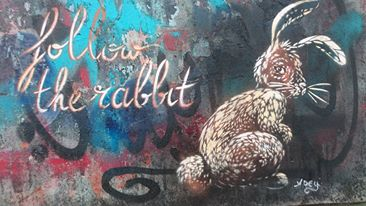 FOLLOW THE RABBIT - BERLIN
