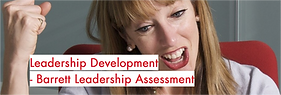 Leadership Assessment Barrett TR.png