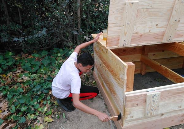 Lombri-compostage 2.JPG