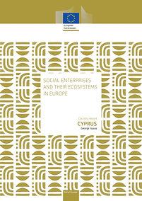 Social enterprises and their ecosystems