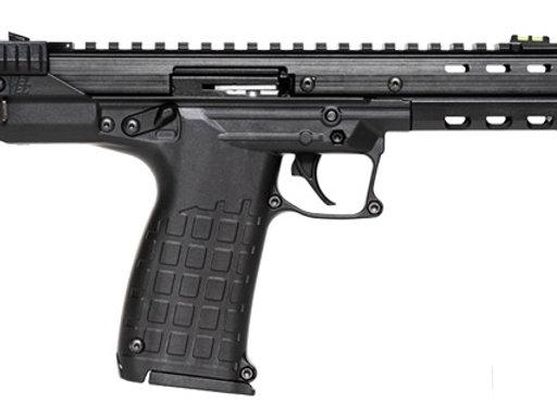 Kel-Tec CP33 Target Pistol