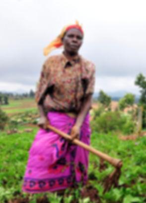 Senegal farmer woman.jpg