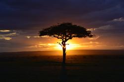 africa-3002460