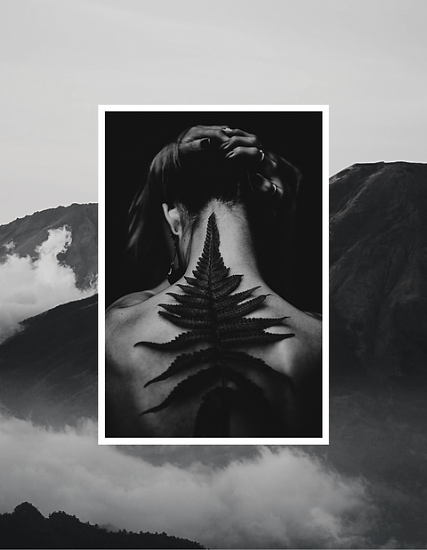 Black and White Asymmetric Photography P