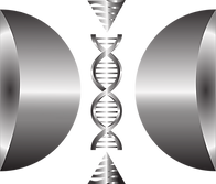 dna silver (1).png