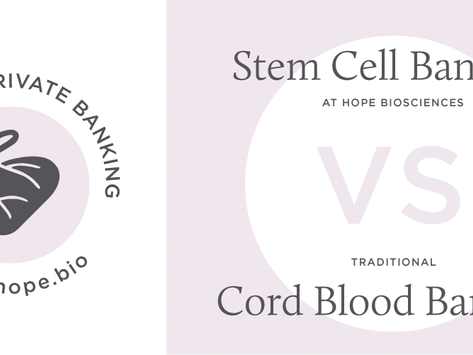 A Guide to Private Banking: Hope Bio's Stem Cell Banking VS. Traditional Cord Blood Banking