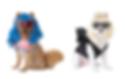 gaga-and-katy-perry-dog-costume-comp.png