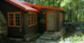 Vintage Wisconsin log cabin front entry door