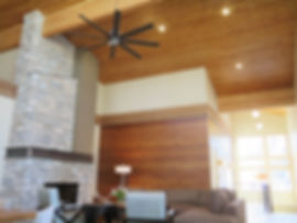 Modern sloped shed ceiling home with notty wood