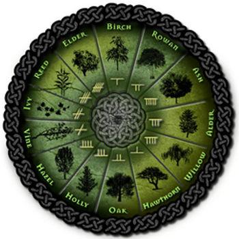 tree calendar.jpg