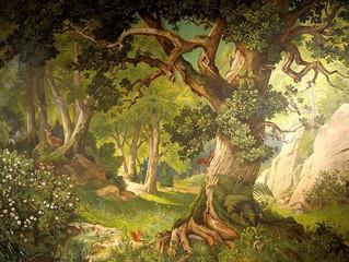 Celtic Tree Wisdom. The Oak Tree: Duir